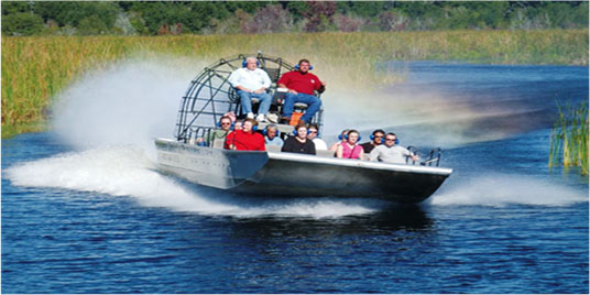 Enjoy an exciting airboat ride through Louisiana's beautiful swamps.