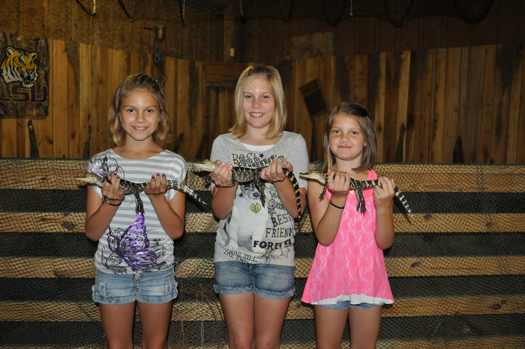 alligator tour near new orleans, activities for kids in new orleans